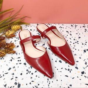 NEW Zara Pointed Asymmetrical Red Mule Flats Sz 35